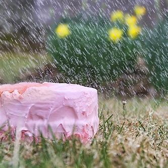cake in the rain
