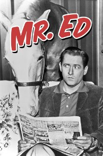 Mr. Ed and Wilbur