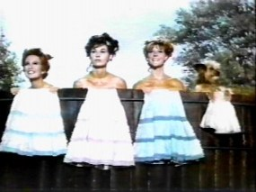 petticoat junction girls in water tower