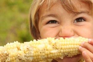 kid eats corn on the cob