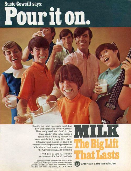 The Cowsills - In Need Of A Friend b/w Mister Flynn