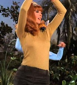 Ginger as a member of The Honeybees